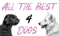 All the best 4 dogs